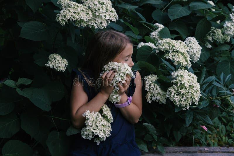 Lila que huele de la niña linda imagen de archivo