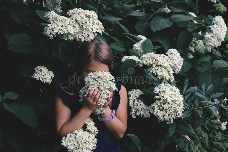 Lila que huele de la niña linda fotos de archivo