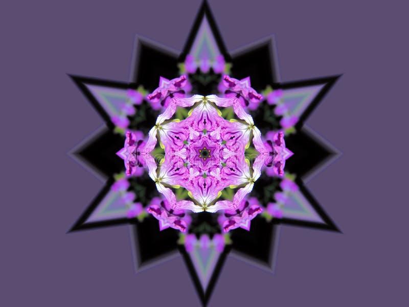 Lilablomma- och stjärnakalejdoskop stock illustrationer