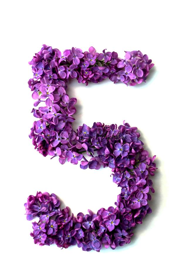 Lilac alphabet. Flower alphabet of lilacs on a white background, question, flowers, natural, spring, letters, symbol, isolated, design, english, color, plant stock photos
