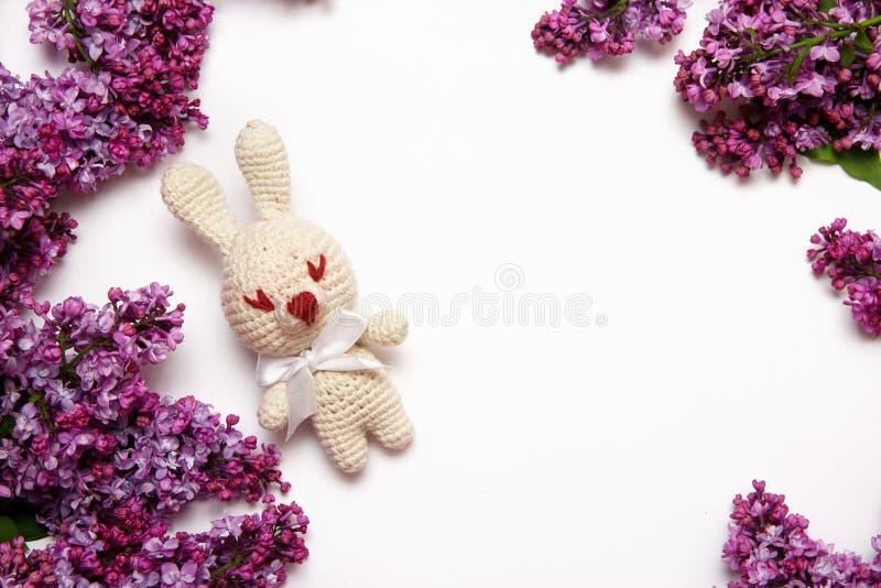 Lilac bloemen met het breien stuk speelgoed konijn op witte achtergrond De hoogste vlakke mening, legt, kopieert ruimte stock foto's