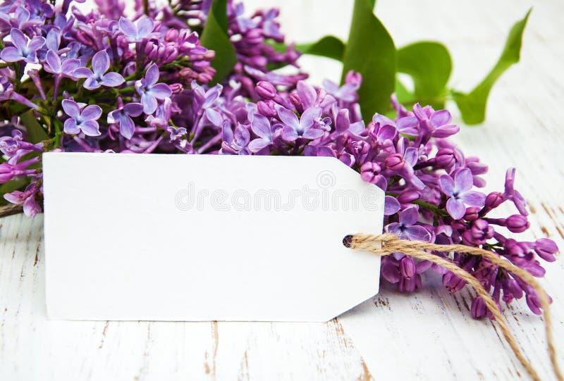 Lilac bloemen met lege markering stock foto's