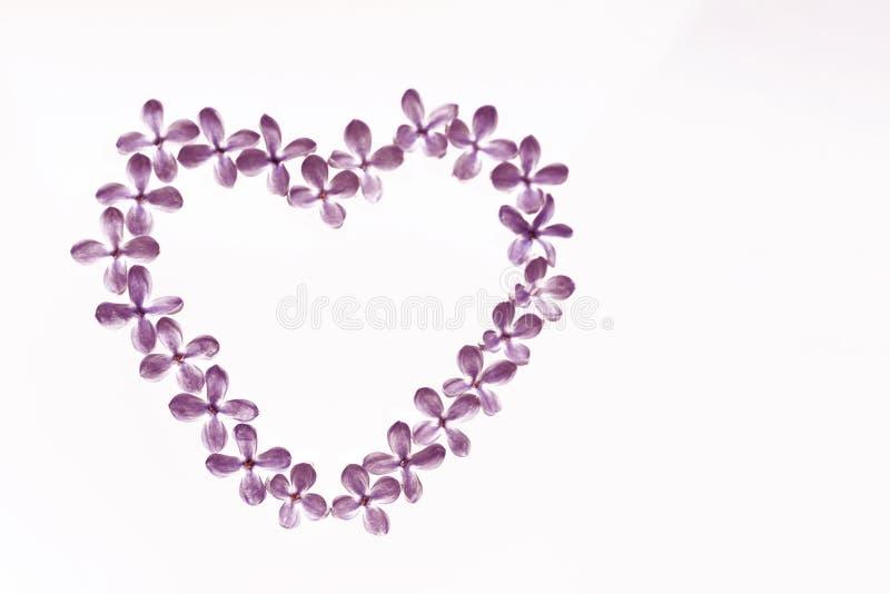Lilac bloemen op een witte achtergrond in de vorm van een hart worden opgemaakt dat Zacht beeld stock foto's