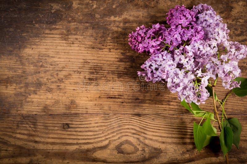 Lilac bloemen op oude houten lijst stock foto