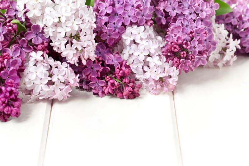 Lilac bloemenboeket royalty-vrije stock fotografie