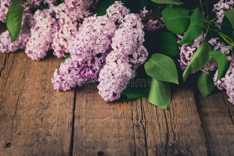 Lilac Blooms Beautiful Bunch of Lilac Lilac Flowering Flower Background Green branch with spring Purple Flower Wooden Background stock image