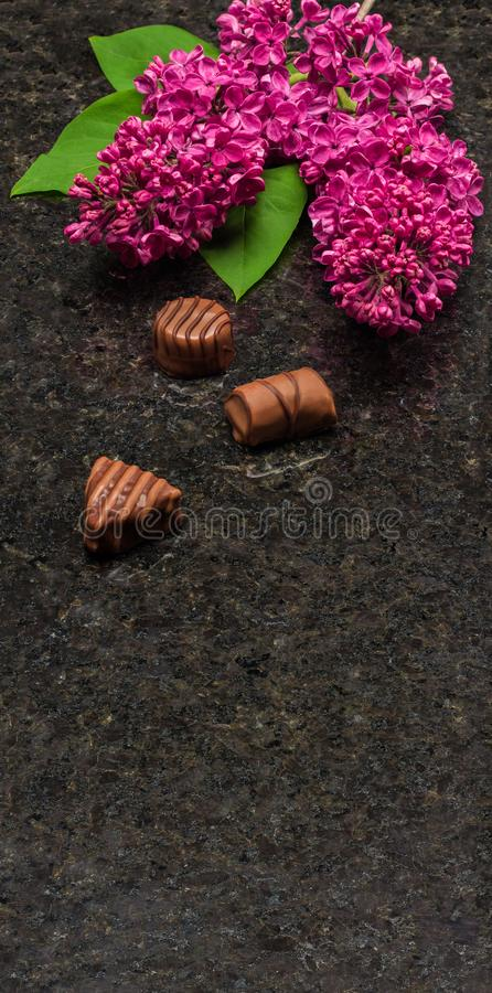 Lilac blossom branches and chocolates on Antique Brown granite c stock image