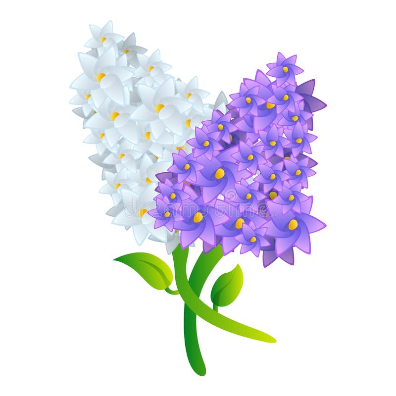 Lilac bouquet icon, cartoon style. Lilac bouquet icon. Cartoon of lilac bouquet vector icon for web design isolated on white background stock illustration