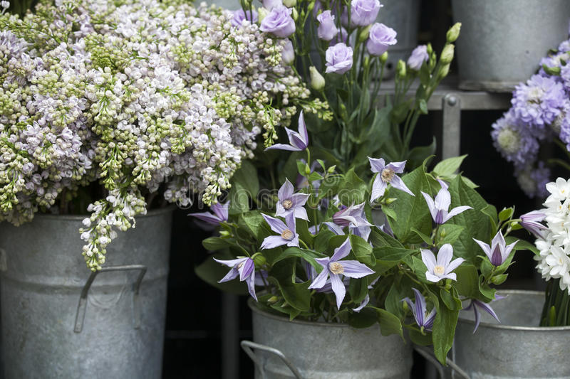 A Lilac bouquets, bells and daffodils are in buckets for sale royalty free stock photo
