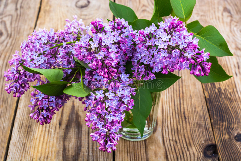 Lilac branch in the glass royalty free stock images