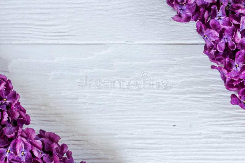 Lilac branches on the corners of the white wooden surface. Contrast studio picture.  royalty free stock photo