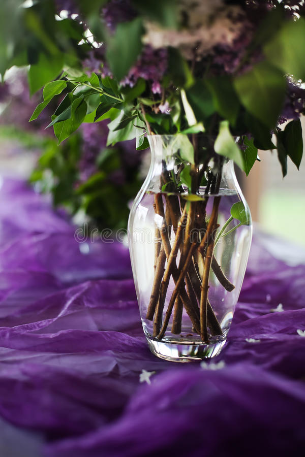 Download Lilac decoration stock image. Image of food, dinner, green - 30510085