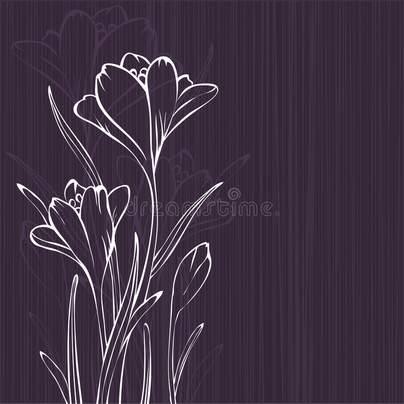 Lilac design with crocus royalty free illustration