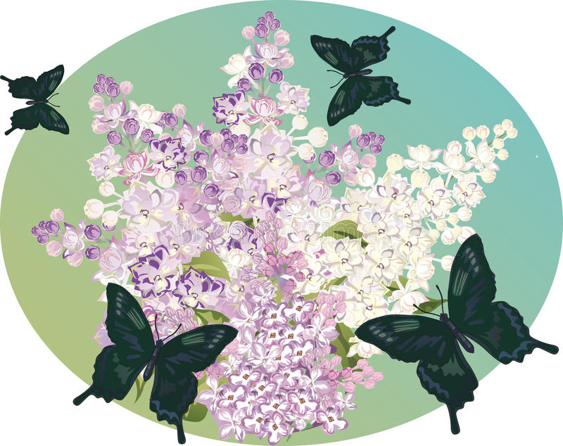 Download Lilac Flower Branch And Dark Butterflies Stock Vector - Illustration: 18271068