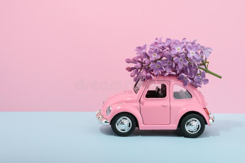 Lilac Flower On Cartoon Toy Car With Empty Space Stock Photo