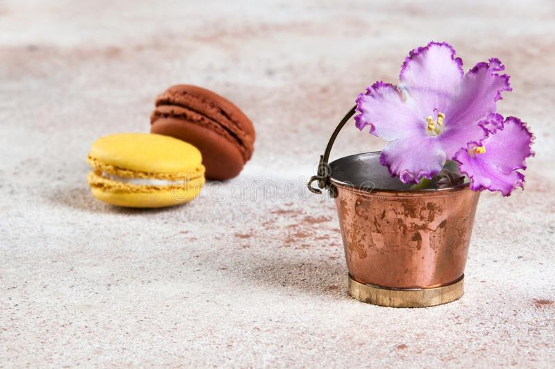 Lilac flower violet in vintage copper bucket. And delicious tasty yellow brown macaroons on concrete .Copy space for text royalty free stock photo