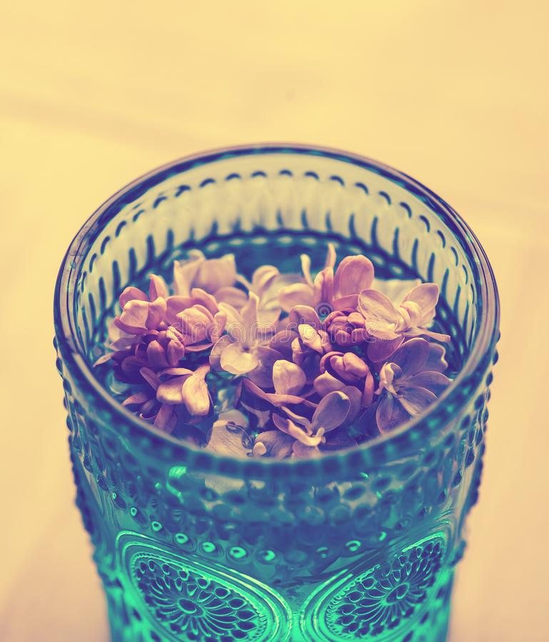 Lilac flowers in glass royalty free stock image