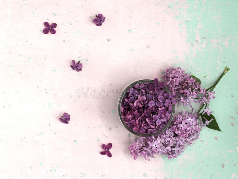 Lilac flowers in a glass dish stock image
