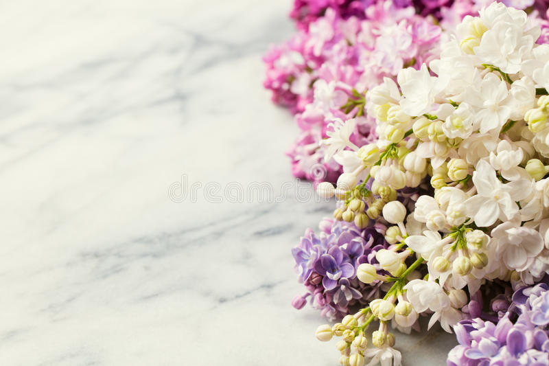 Lilac flowers on marble background. Copy space. Top view. royalty free stock image