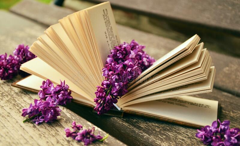 Lilac flowers on open book royalty free stock images