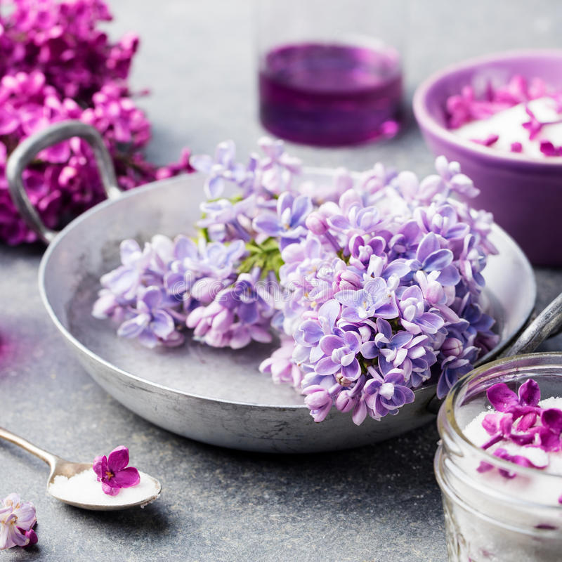 Lilac flowers sugar and syrup, essential oil with flower blossoms in glass jar Grey stone background stock image