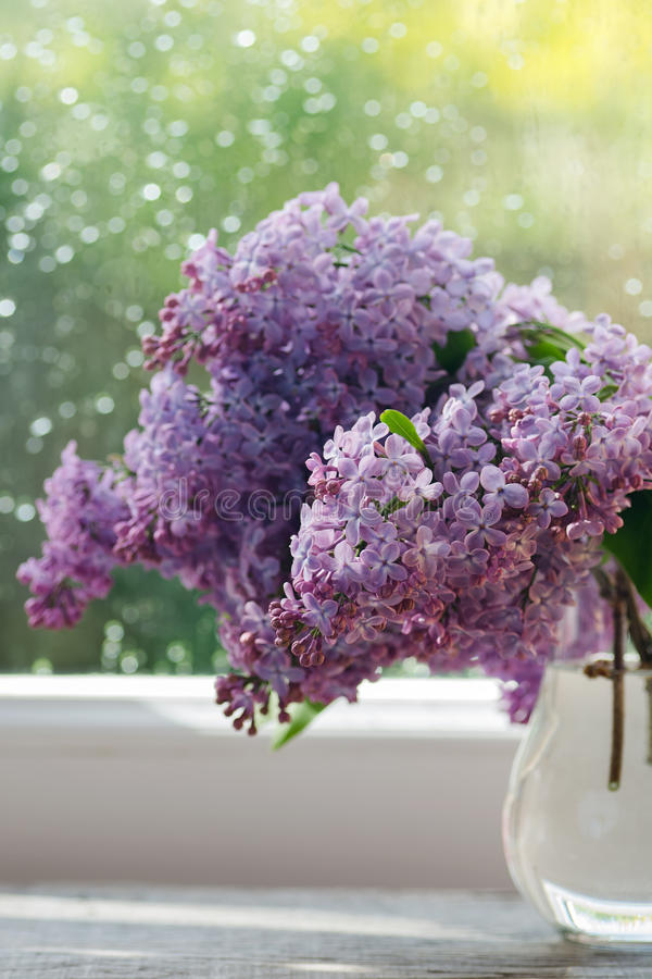 Lilac flowers in vase on window stock photography