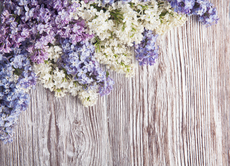 Download Lilac Flowers On Wood Background, Blossom Branch On Wood Stock Photo - Image: 42350416