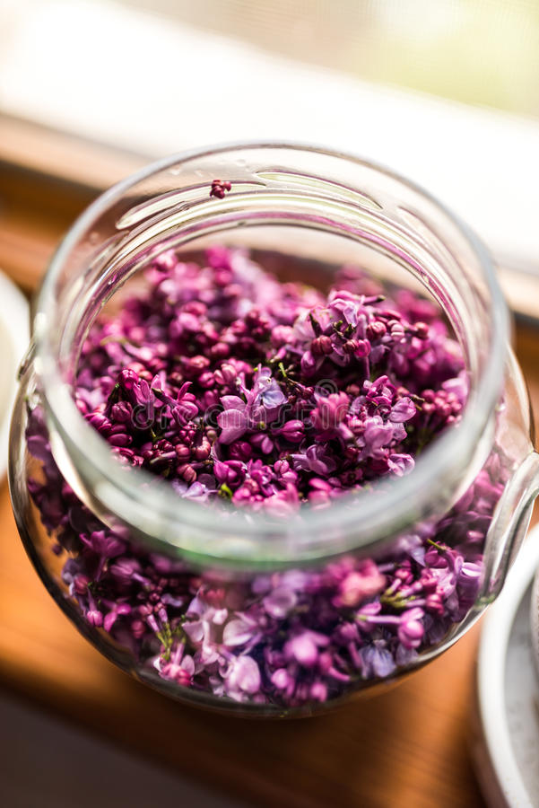 Lilac jelly preparation. Lilac flower infusion in hot water for jelly preparation stock photo