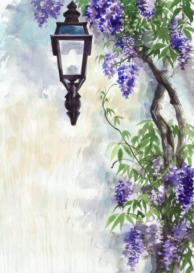 Lilac lantaarn stock illustratie