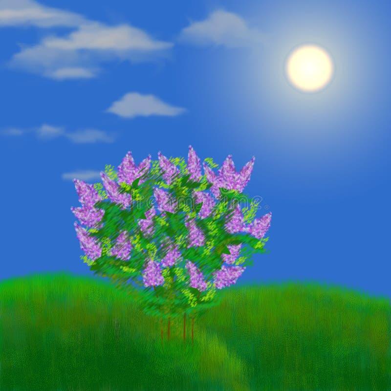 lilac no prado ilustração do vetor