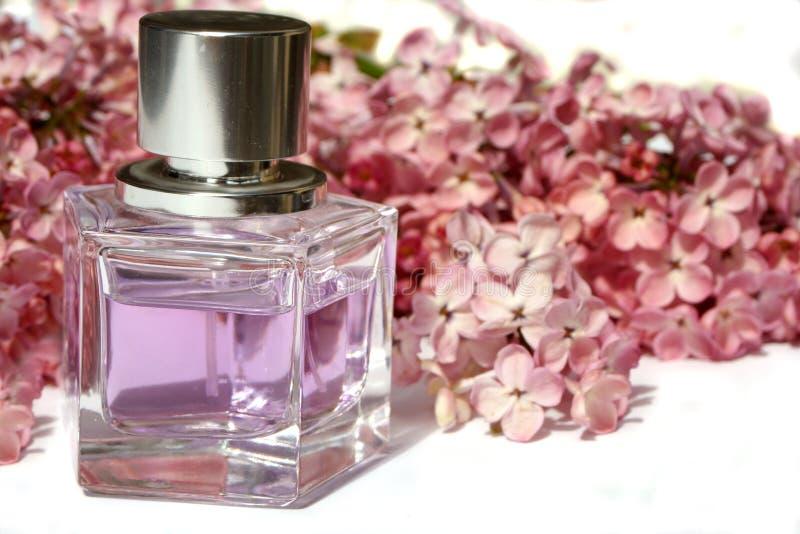 Lilac parfum stock afbeelding