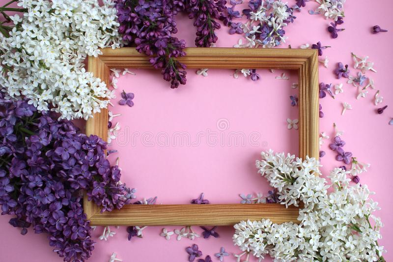 Texture of small flowers of lilac of different shades of purple around the frame royalty free stock images