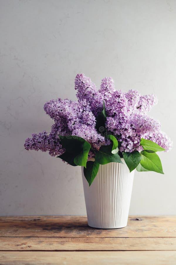 Free Lilac (Syringa Vulgaris) Stock Photography - 55254962