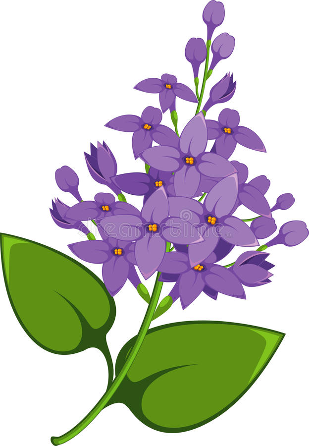 Lilac tak vector illustratie