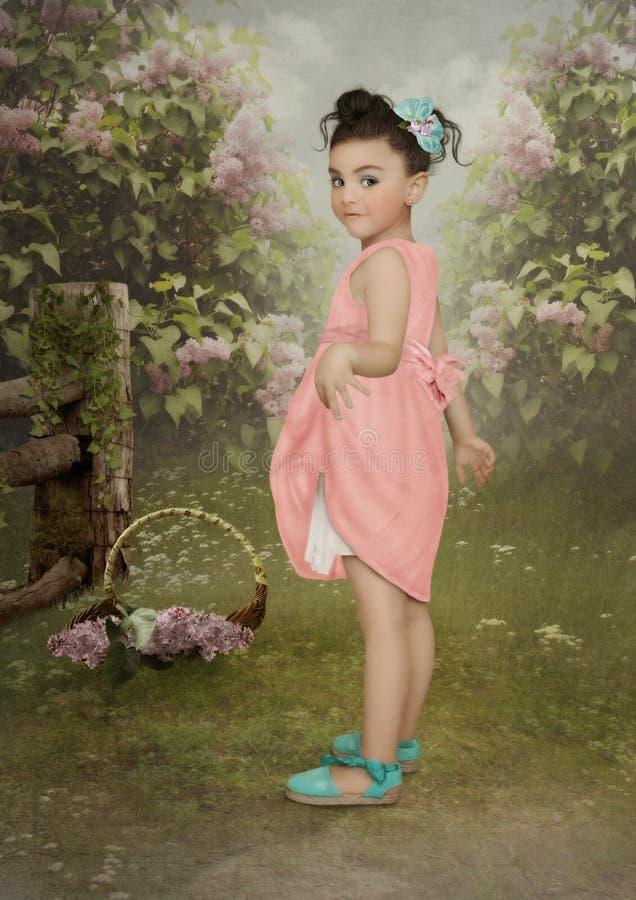 Lilac tuin stock fotografie