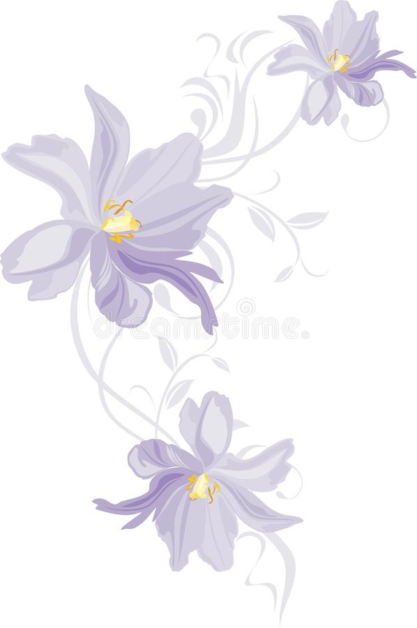 Lilac tulips. Decorative element for design royalty free stock photography