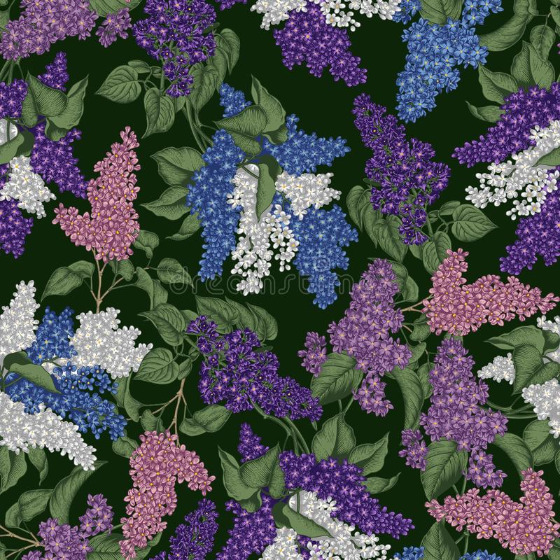 Lilac. Vector seamless pattern in vintage style. Spring flowers. Flowering shrubs. Plants in parks and gardens. stock illustration