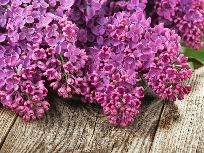 Lilac on a wooden background royalty free stock photos