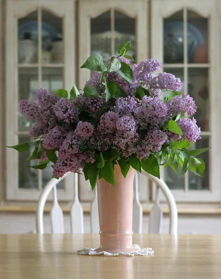 Lilacs foto de stock royalty free