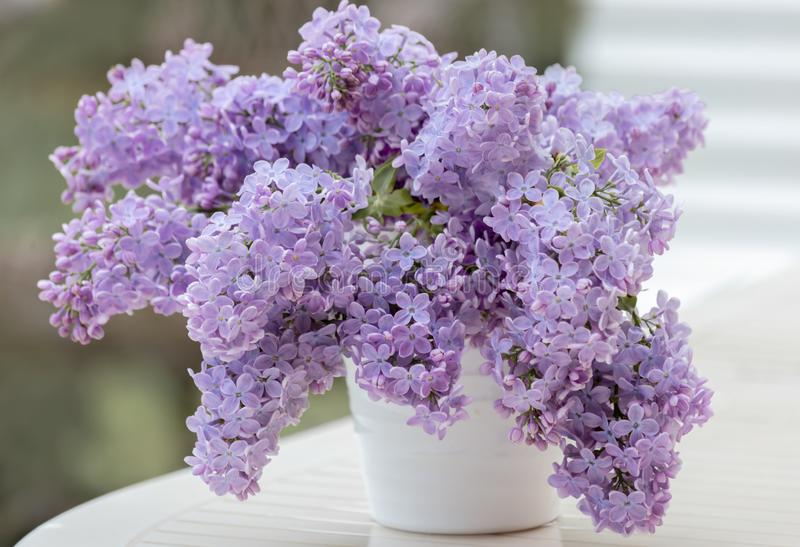 Lilacs of bouquet in a white ceramic vase in rainy weather in a spring garden. stock images