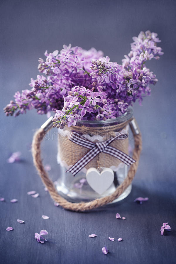 Lilacs flowers in a pot. Bouquet of lilacs flowers in a pot decorated with a heart royalty free stock image