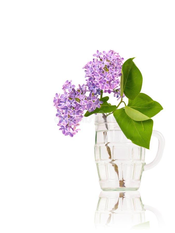 Lilan blommar i exponeringsglas arkivfoton