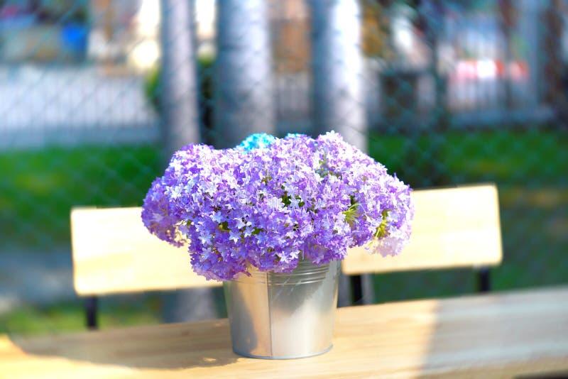 Lilan blommar i hinkvas på trätabeller royaltyfria bilder