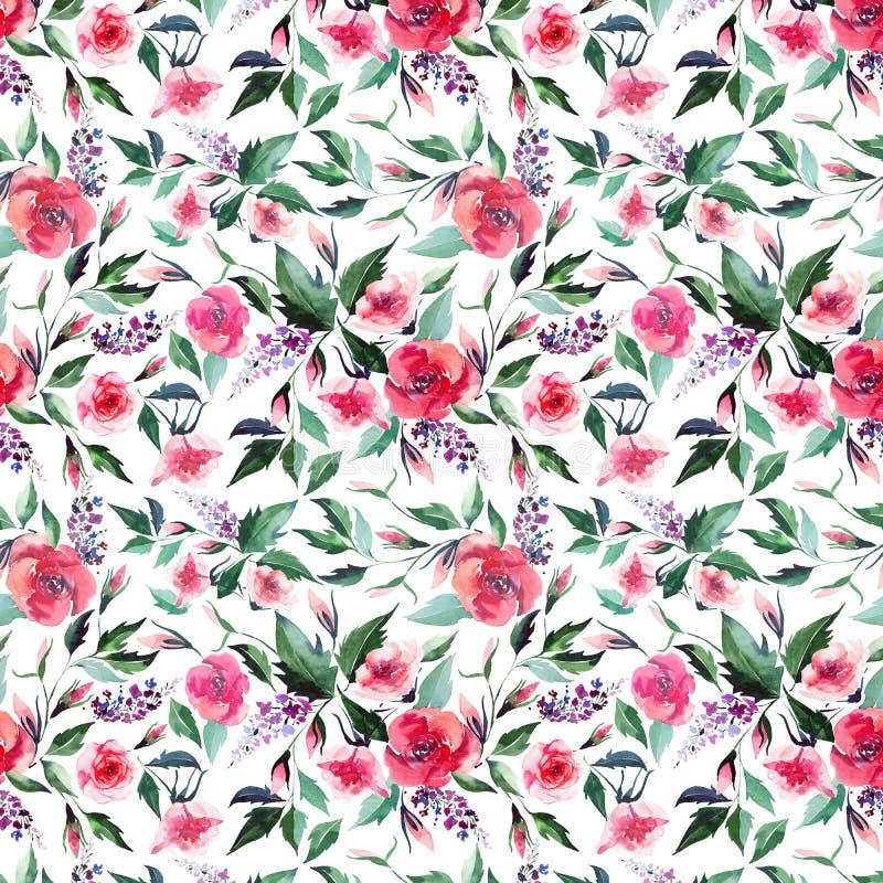 Lilas rose de beaux wildflowers de fines herbes roses doux tendres colorés merveilleux élégants lumineux tendres floraux de resso illustration libre de droits