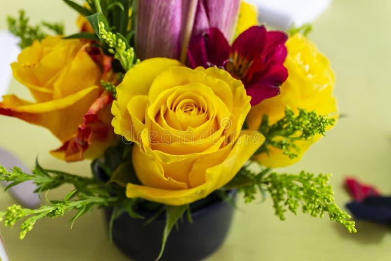 Lilas rouges de petit morceau de groupe de roses jaunes images libres de droits