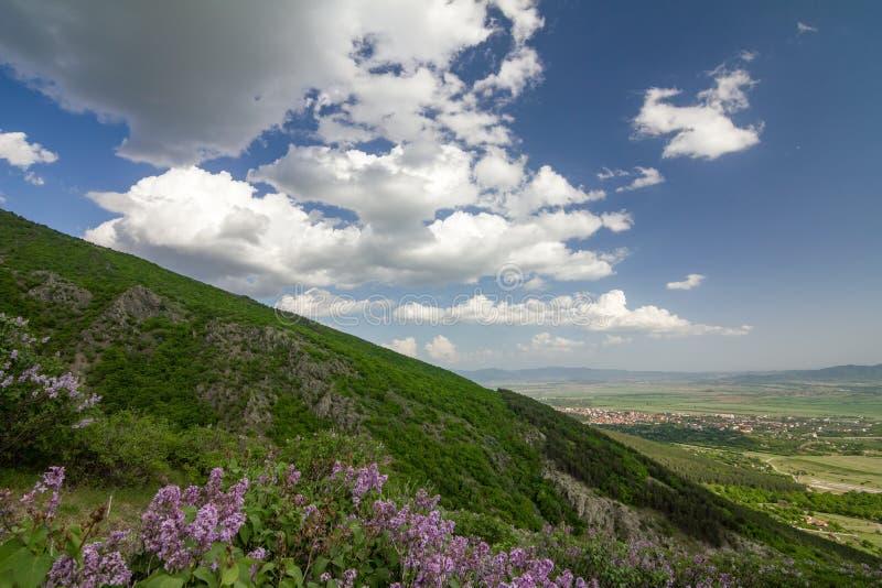 Lilcas σε Stara Planina, Sopot, Βουλγαρία στοκ φωτογραφία με δικαίωμα ελεύθερης χρήσης