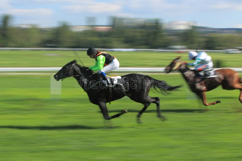 Download Lili In Horse Racing In Prague 2012 Editorial Stock Photo - Image: 26894958