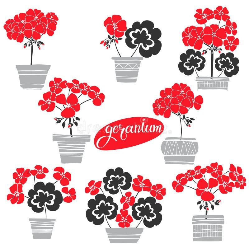 Lilie des Tales Vektorillustration, lokalisierte Florenelemente für Design Einfarbige Illustration des Schattenbildes auf Weiß lizenzfreie abbildung