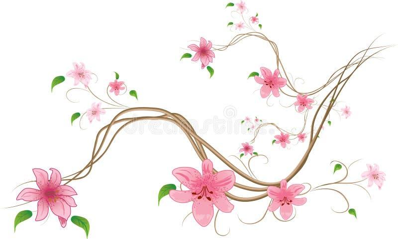 Lilien auf weißem Hintergrund stock abbildung