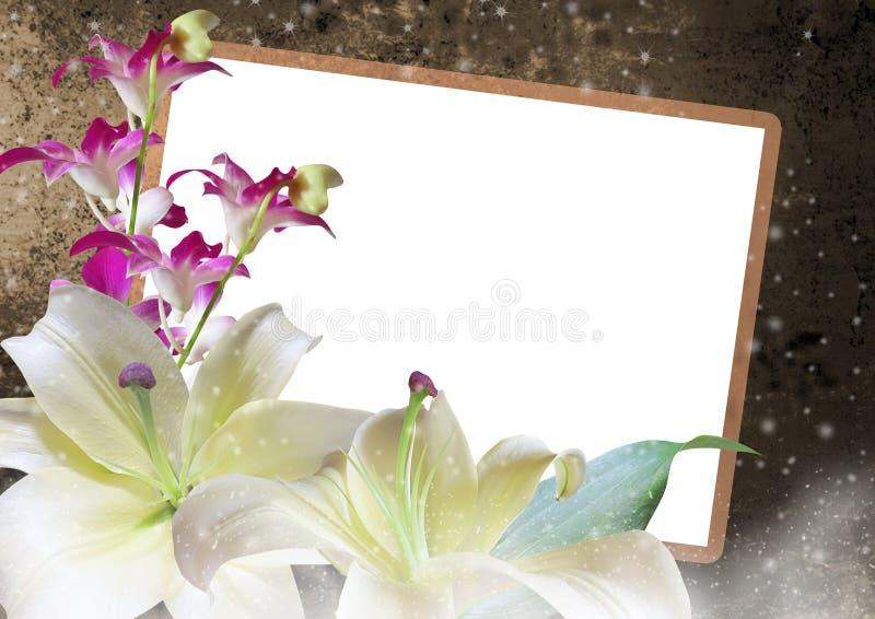 Lilien- und Orchideenblumenrahmen lizenzfreies stockbild